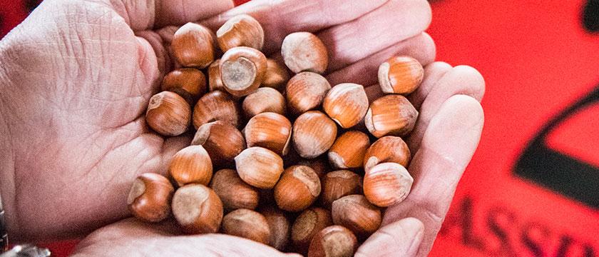 mercato delle nocciole